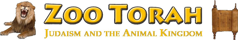 Zoo Torah