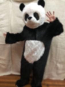 Disfraces de Panda Corporeo