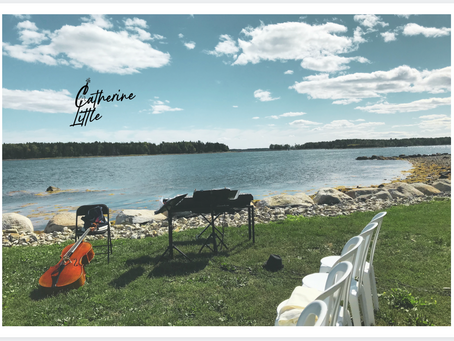 You've Got More Mail... postcards from Summer 2020