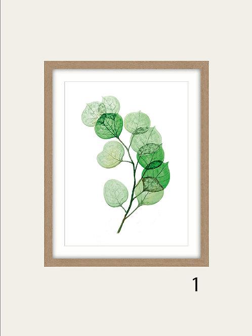 Cuadros de Hojas Verdes 45X50