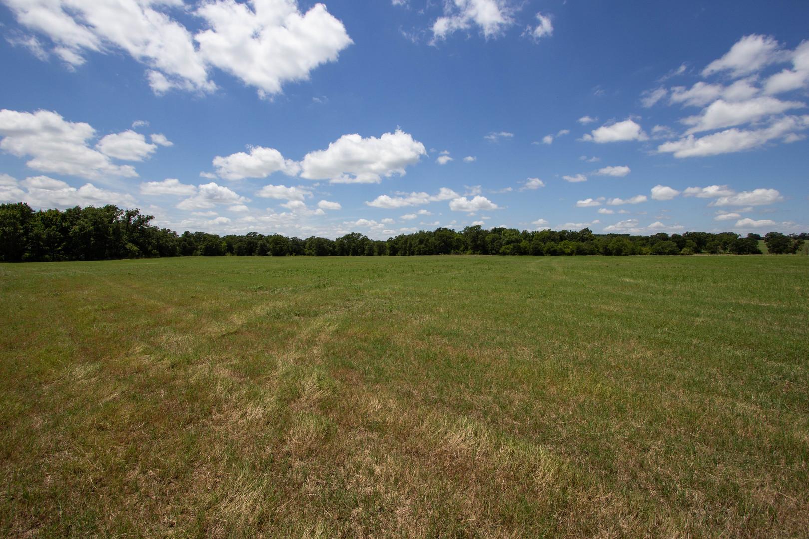 Pasture at Oak Creek Ranch