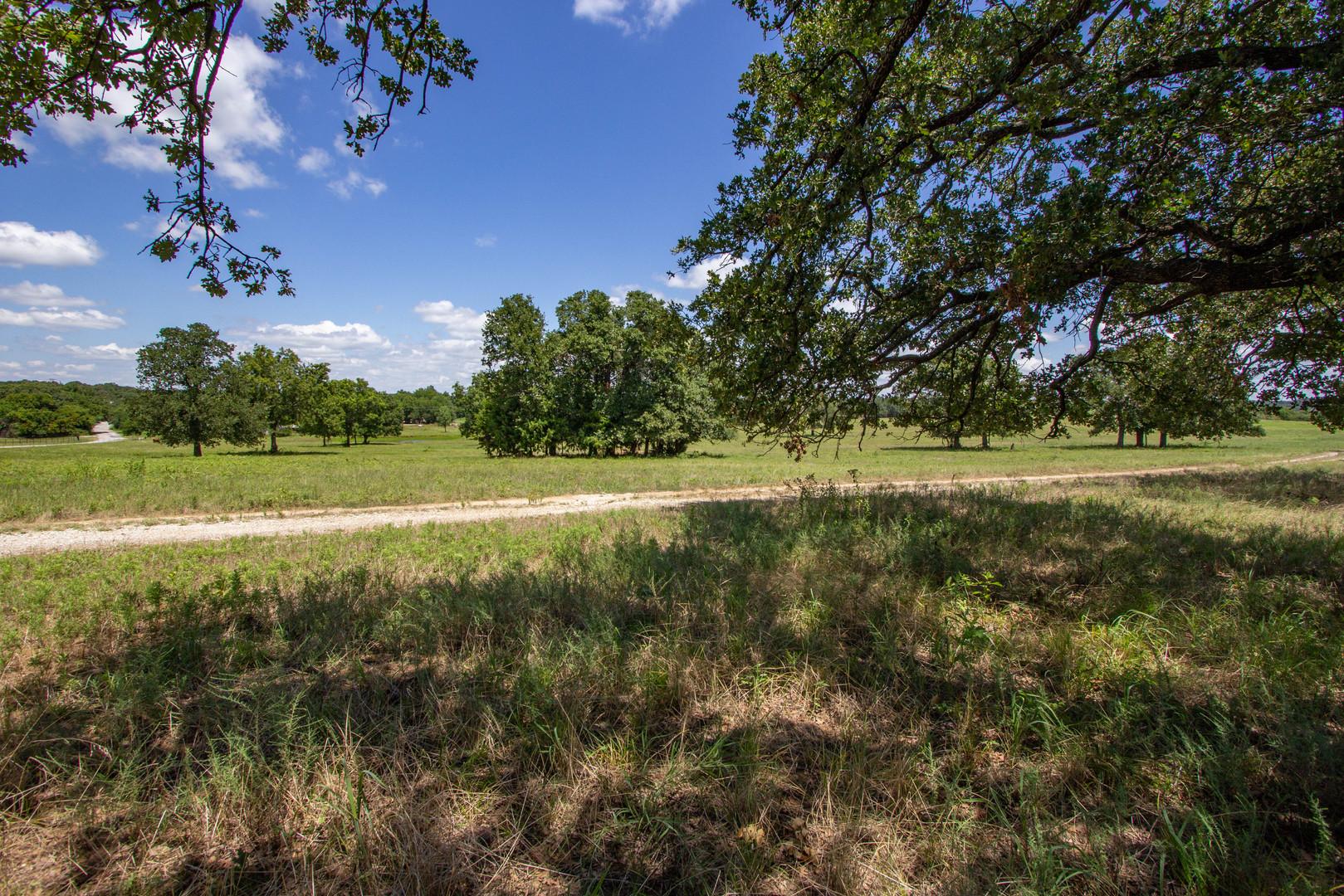 Oak Trees Oak Creek Ranch