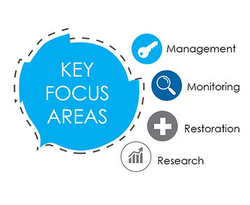 GCRF KEY FOCUS AREA.jpg