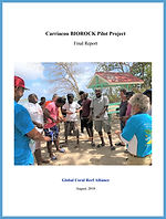 GOAM Carriacou Biorock Report.jpg