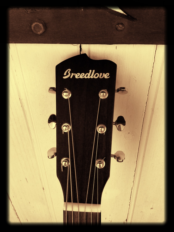 Breedlove!