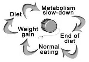 Metabolic Damage cycle