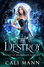 Destroy ebook cover (1).jpg