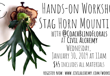 Hands-on Staghorn Mounting Class