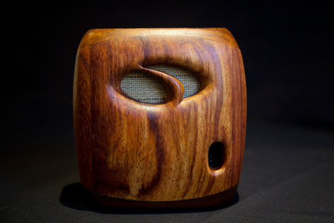 Buetooth Speaker