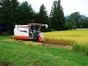 米の収穫作業が終わりました。