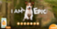 FB_SL_Dog_FINAL.jpg