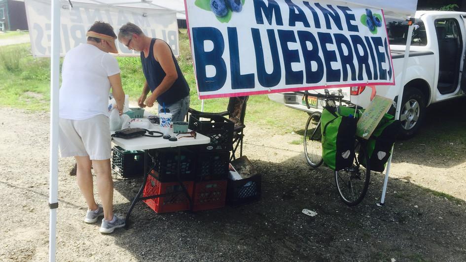 roadside blueberry water (2018)