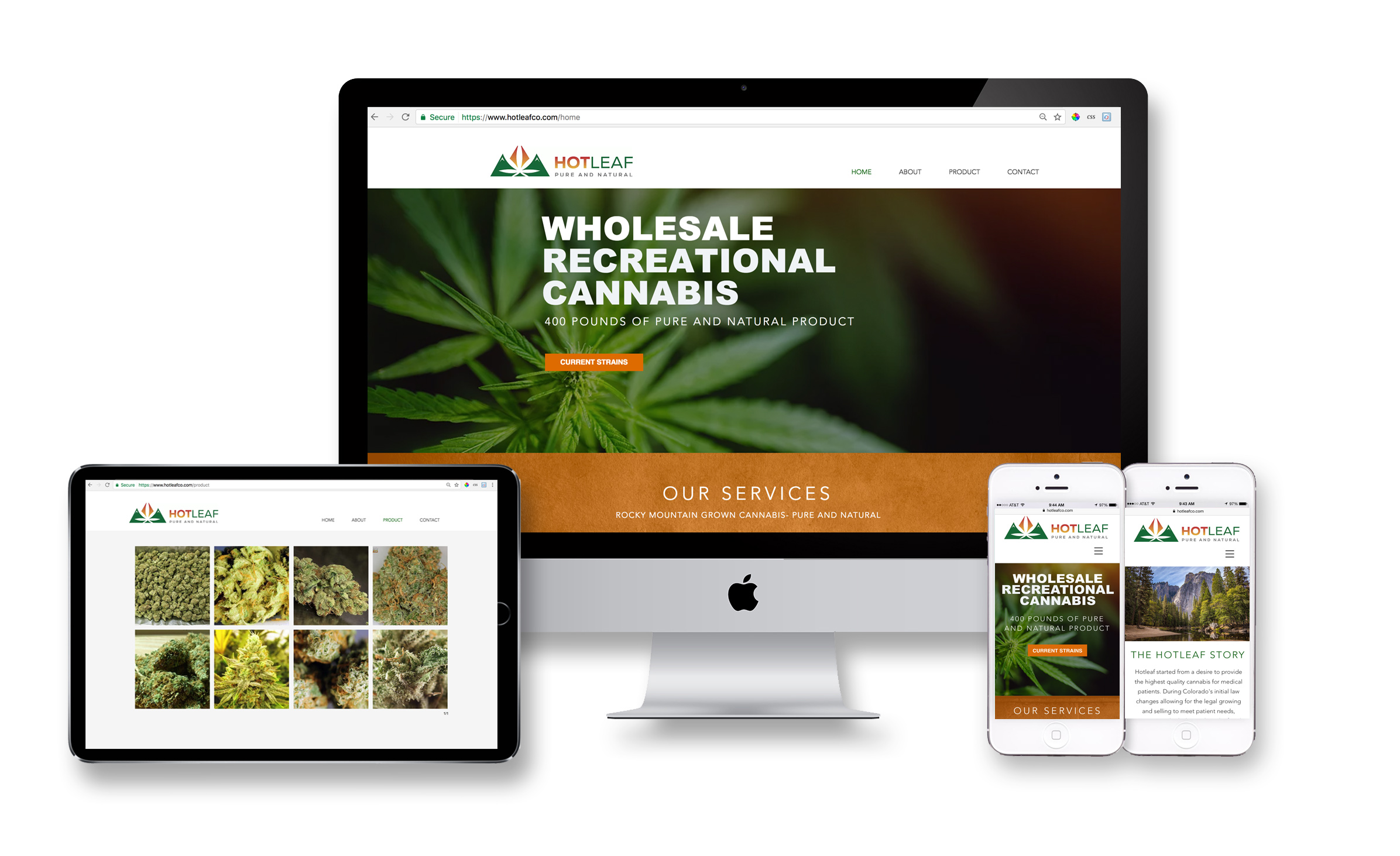 Hot Leaf Website