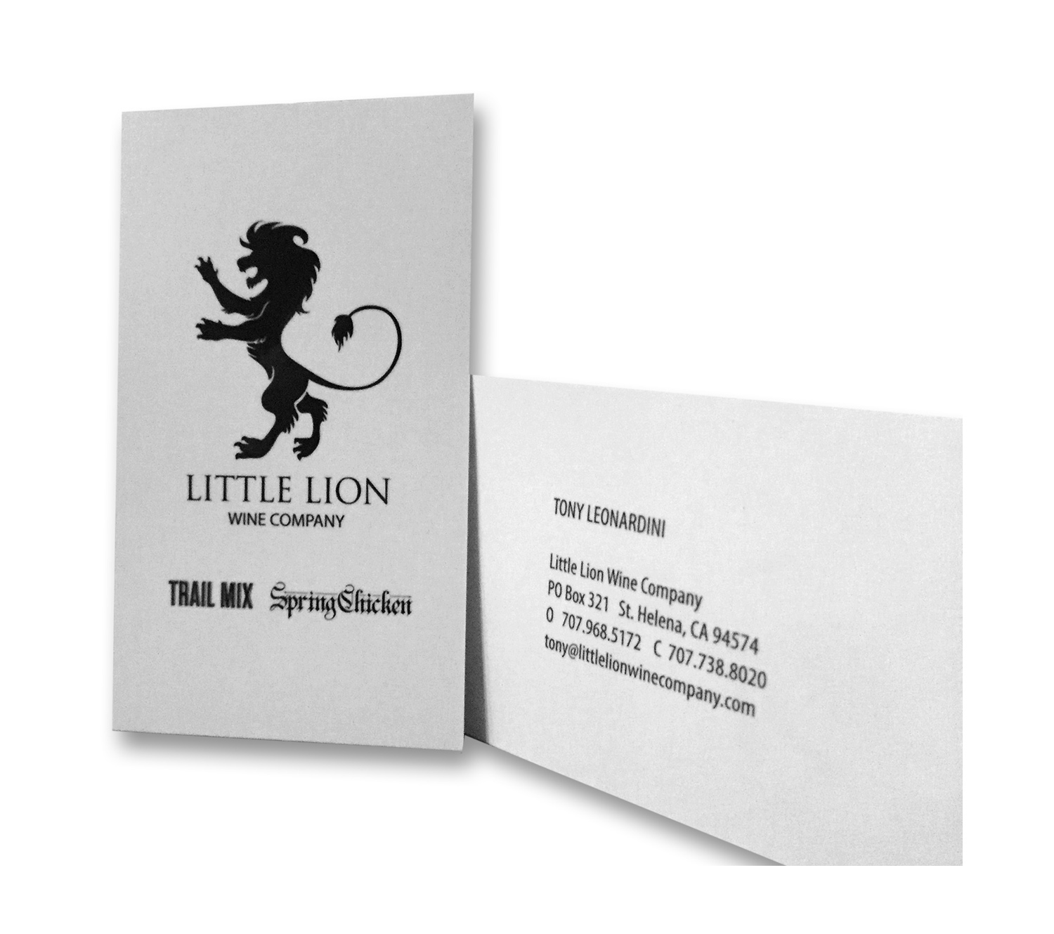 Little Lion Business Card Design