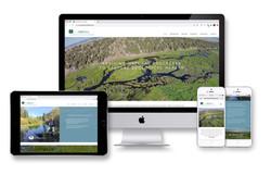 Ecometrics website design & build