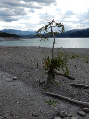 """Des nouvelles de """"L'encre des lacs"""" sur Serre-Ponçon"""