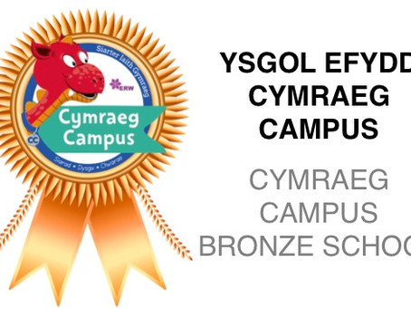 We have achieved the Siarter Iaith Bronze Award!