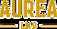 aurea-lkv-klinen_edited.png