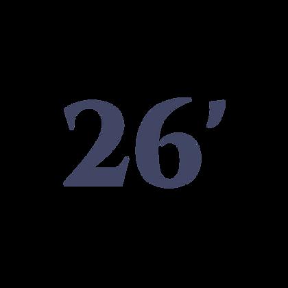 26' SHADE RV CANOPY SYSTEM