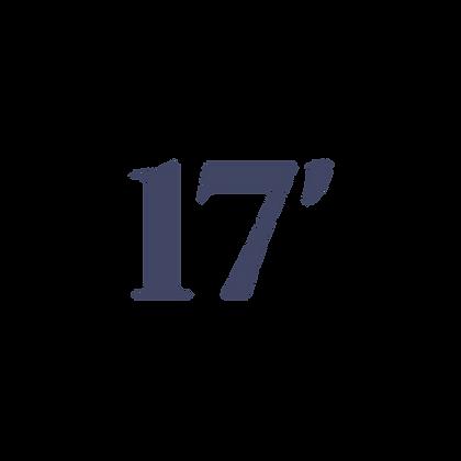 17' SHADE RV CANOPY SYSTEM