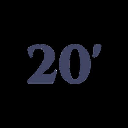 20' SHADE RV CANOPY SYSTEM
