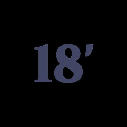 18' SHADE RV CANOPY SYSTEM
