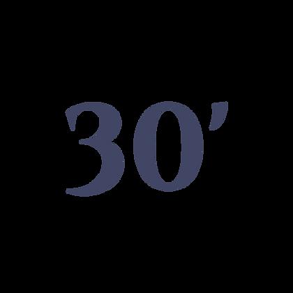30' SHADE RV CANOPY SYSTEM