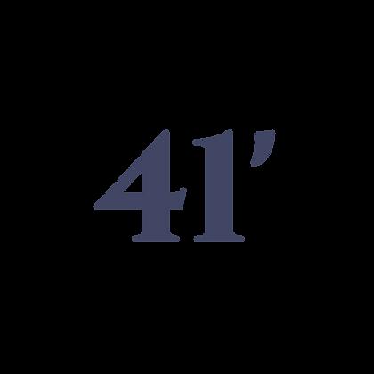 41' SHADE RV CANOPY SYSTEM
