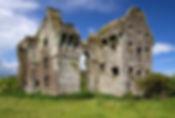 coppingers-court-castle-1.jpg
