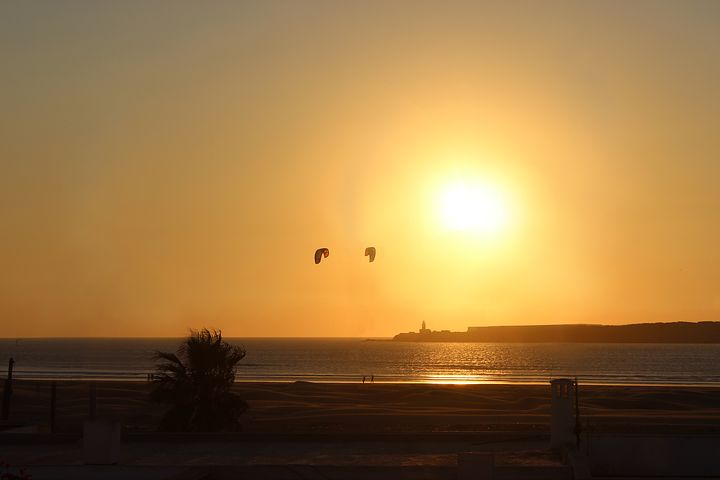 kite-2828045__480