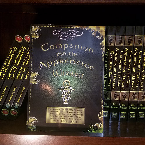Companion for the Apprentice Wizard