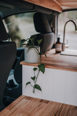 Love a plant