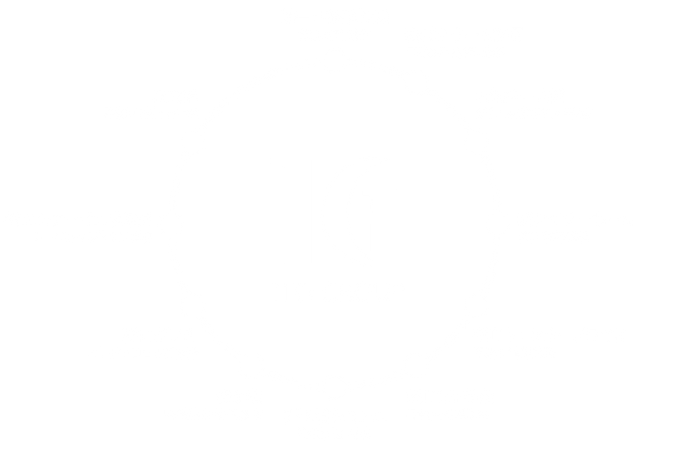 company_itogroup.png