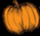 pumpkin (pumpkin picture).png