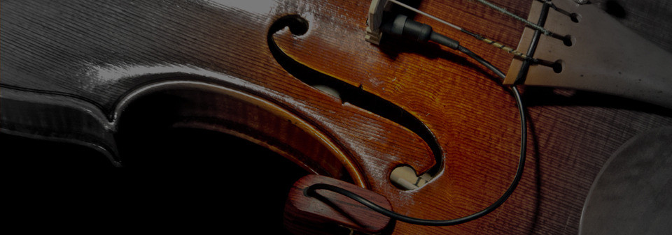 violin-pickup-presentation-black_edited.