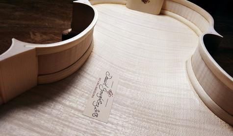 gf 5 string acoustic violin