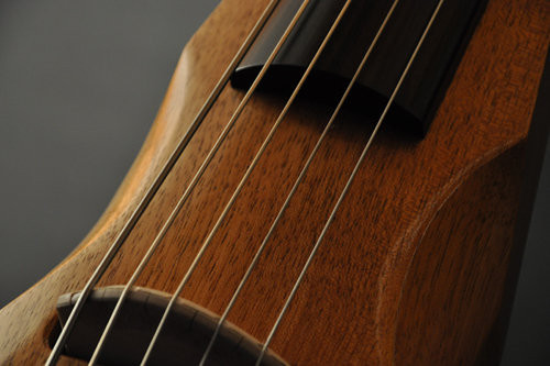 gfviolins electric cello.jpg