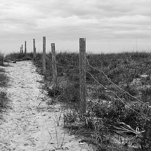 Apalachicola - St. George Island