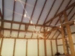 lighting - white edison ceiling.jpg