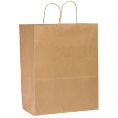 Traveler Kraft Paper-Twist Handle Shopping Bag (250 ct.)