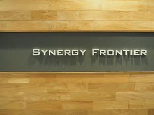 synergy-frontier.JPG