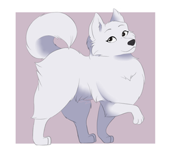 Pomeranian (Doggust)