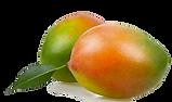 Mangos vor Freistellung_clipped_rev_1.pn