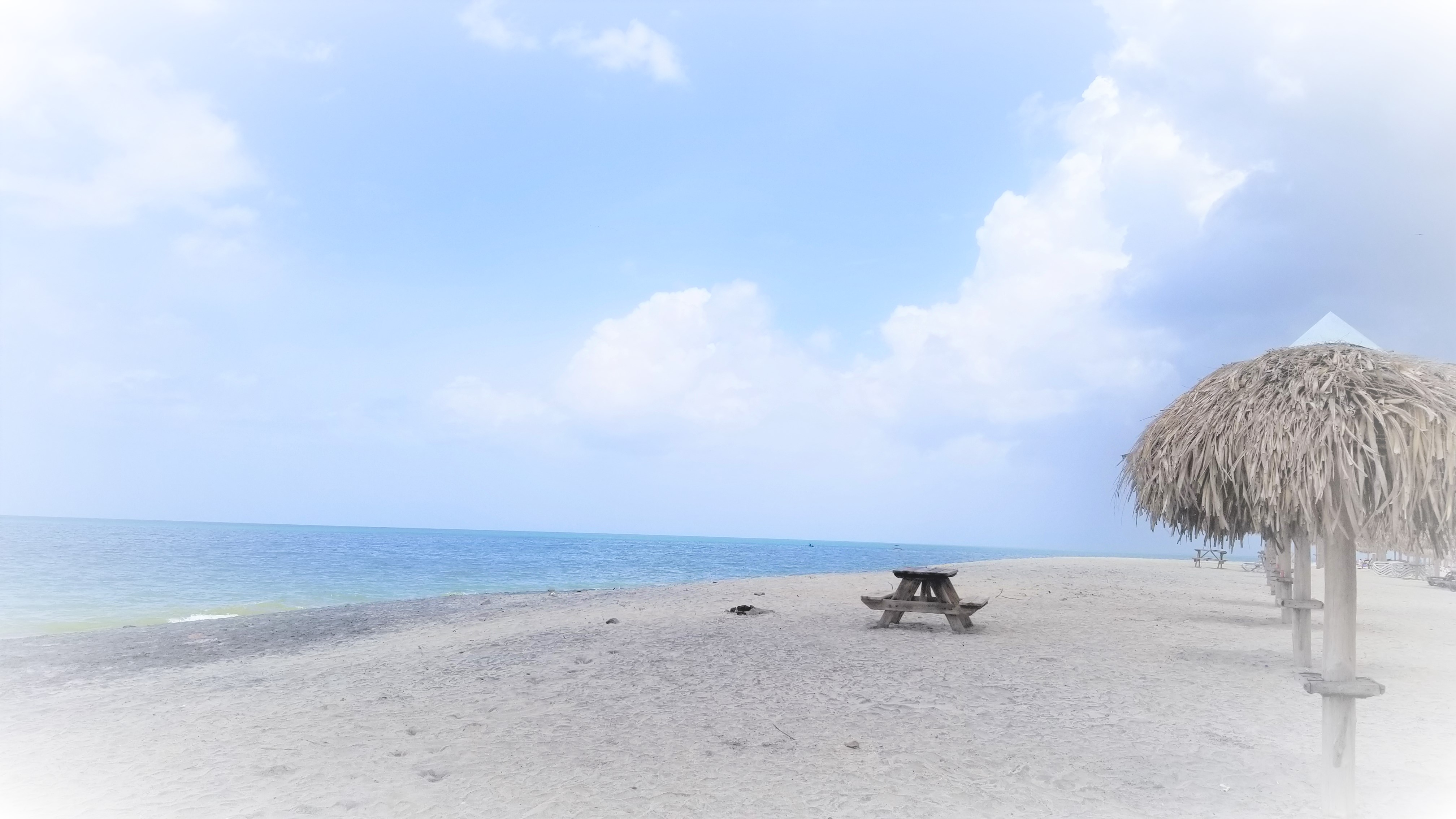 mjl1902 playa1