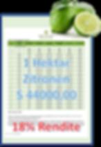 limones renditebild vor freistellung_cli
