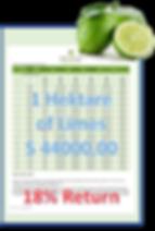 Limones en vor Freistellung_clipped_rev_