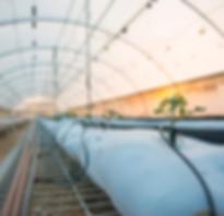 Panama Greenhouse Invest