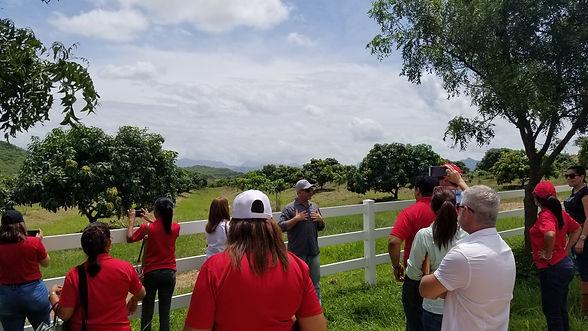 Panama Invest Farm