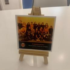 Acrylic frame (small)