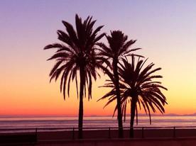 Hollistic Retreat Marbella